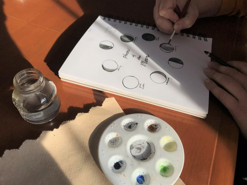 Dodge Nature Center Naturalist Fellow Rachel Vortherms paints the phases of the moon in her nature journal.
