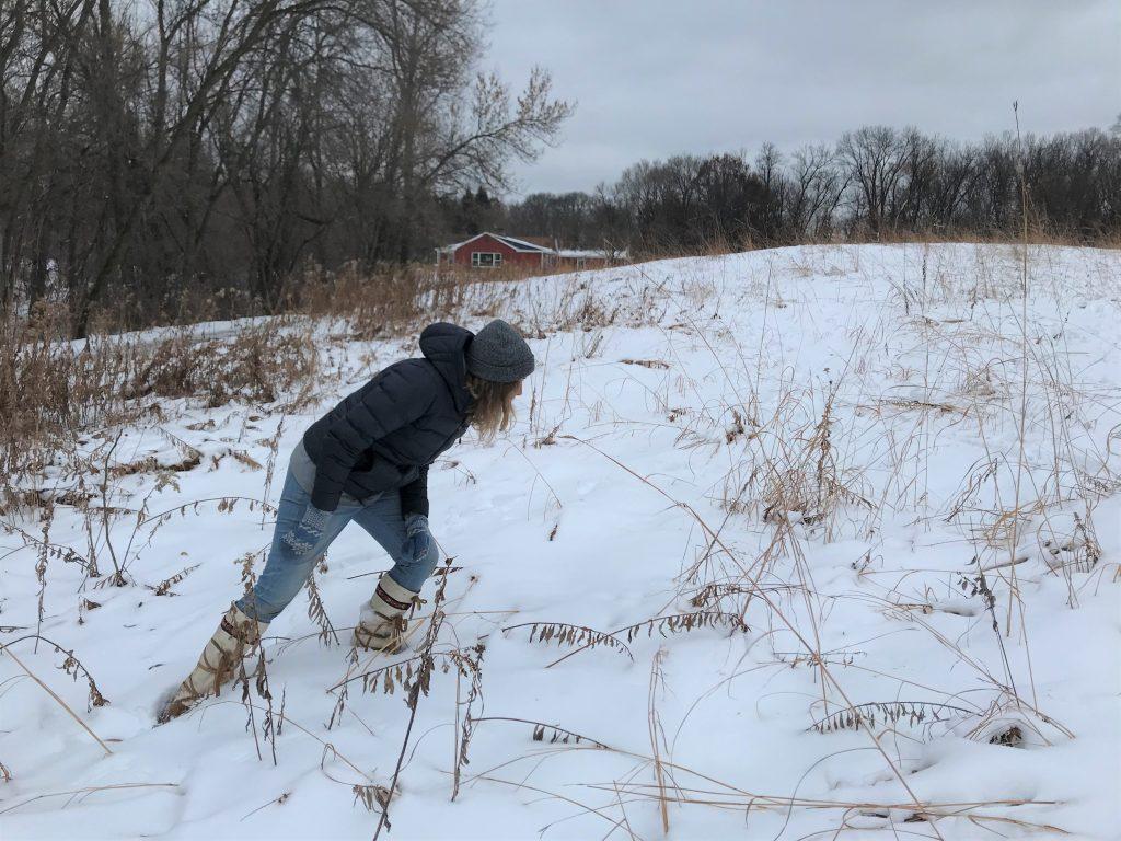 Dodge Nature Center Naturalist Fellow Siri Block inspects the snow-coveredprairie for mammal tracks.