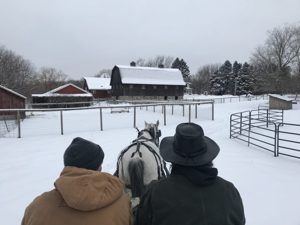 Dodge Nature Center Volunteer and Board Member Alan Johnston and Farmer Don train Terry for sleigh rides.